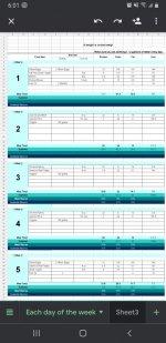 Screenshot_20201025-180156_Sheets.jpg
